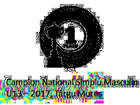 Campion Național Simplu Masculin U13 – 2017, Târgu Mureș